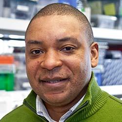 Franck K. Kalume, PhD