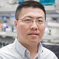Kai Yu, PhD
