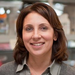Susan Ferguson, PhD