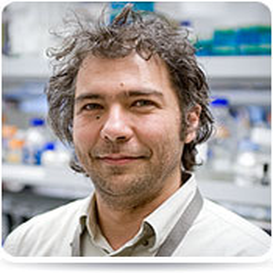 A Murat Maga, PhD